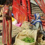 Vendeuse de Khat - Ethiopie