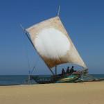 Catamarans à voile
