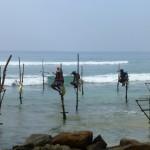 Pêcheurs sur leur perche
