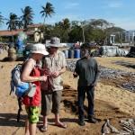 Visite du marché ausx poissons séchés de Négombo