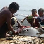 Bonne pêche (5)