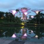 Garden by the Bay : reflets!