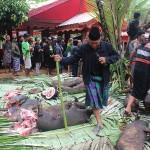 Funérailles Toraja