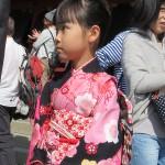 Shichi-go-san à Kamakura