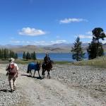 Ambiance trekking