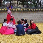 Sur un tapis de feuilles de jingkos
