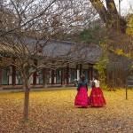 Dans le parc du Gyeonggijeon