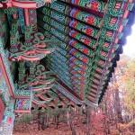 Boiseries colorées de Seoraksan