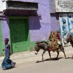 Aux couleurs d'Harar