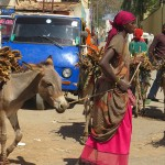 Le charme d'Harar