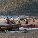Pêcheurs à Chembe