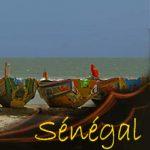 Gilanik SENEGAL Vignette11