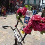 Récup Népal