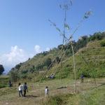 Balançoire de Dashain
