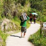 Descente des porteur sur Batad
