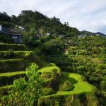 Terrasses autour de Banaue