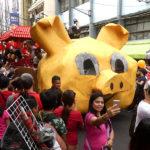 Selfie avec le cochon
