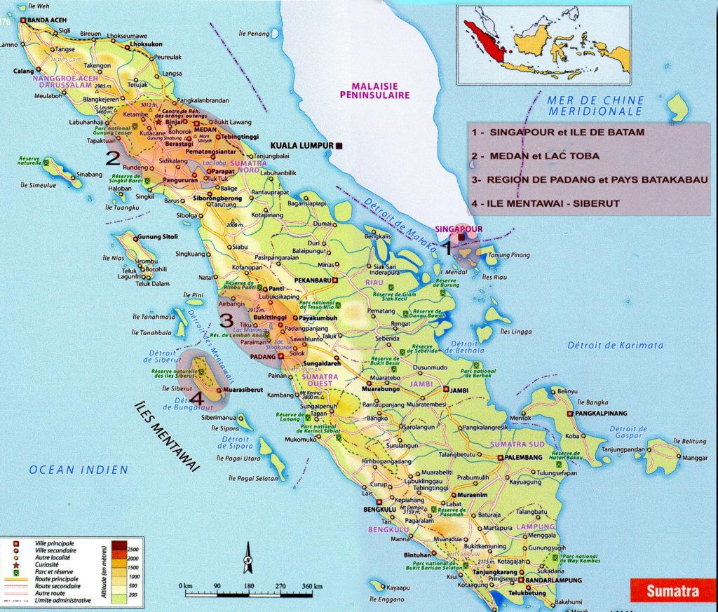 Gilanik et Petit futé Sumatra