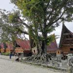 Site de Silliagau