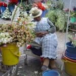 Au marché aux fleurs de Cuenca - Equateur
