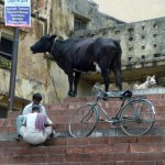 Sur les ghâts de Varanasi -Inde