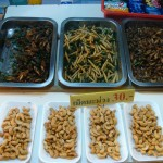 Vers et  insectes en  Thaïlande