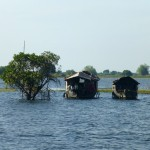 Habitations de la forêt inondée