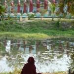Dans les jardins de Banmaw