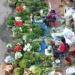 Ephéméride Asie 2011