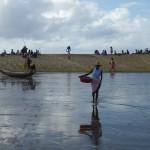 Dans la lagune