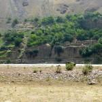 Rives afghanes