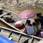 Cochon à bord sur l'Ucayali - Pérou