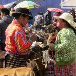 Mexique - Chiapas