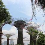 Couleurs de Singapour