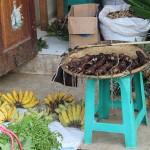 Rats et fruits se cotoient à la vente