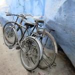 Jodhpur, cité bleue