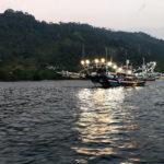 Tous les soirs les bateaux sortent pour pêcher aux lamparos