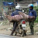 Retour de marché à Bac ha - Vietnam