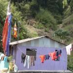 Darjeeling - Sikkim -Inde