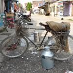 Le laitier de Janakpur - Népal