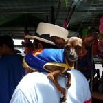 Costume de Superman à Belem - Brésil