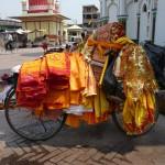 Vélo Hindouiste à Janakpur - Népal
