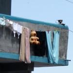 Grande lessive au Sikkim - Inde