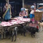 Les chiens en raffolent! Bac Ha - Vietnam