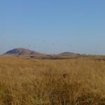 Far west : pirogue