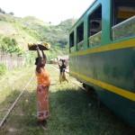 Vu du train