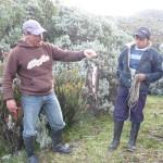 Trek à El Cocuy